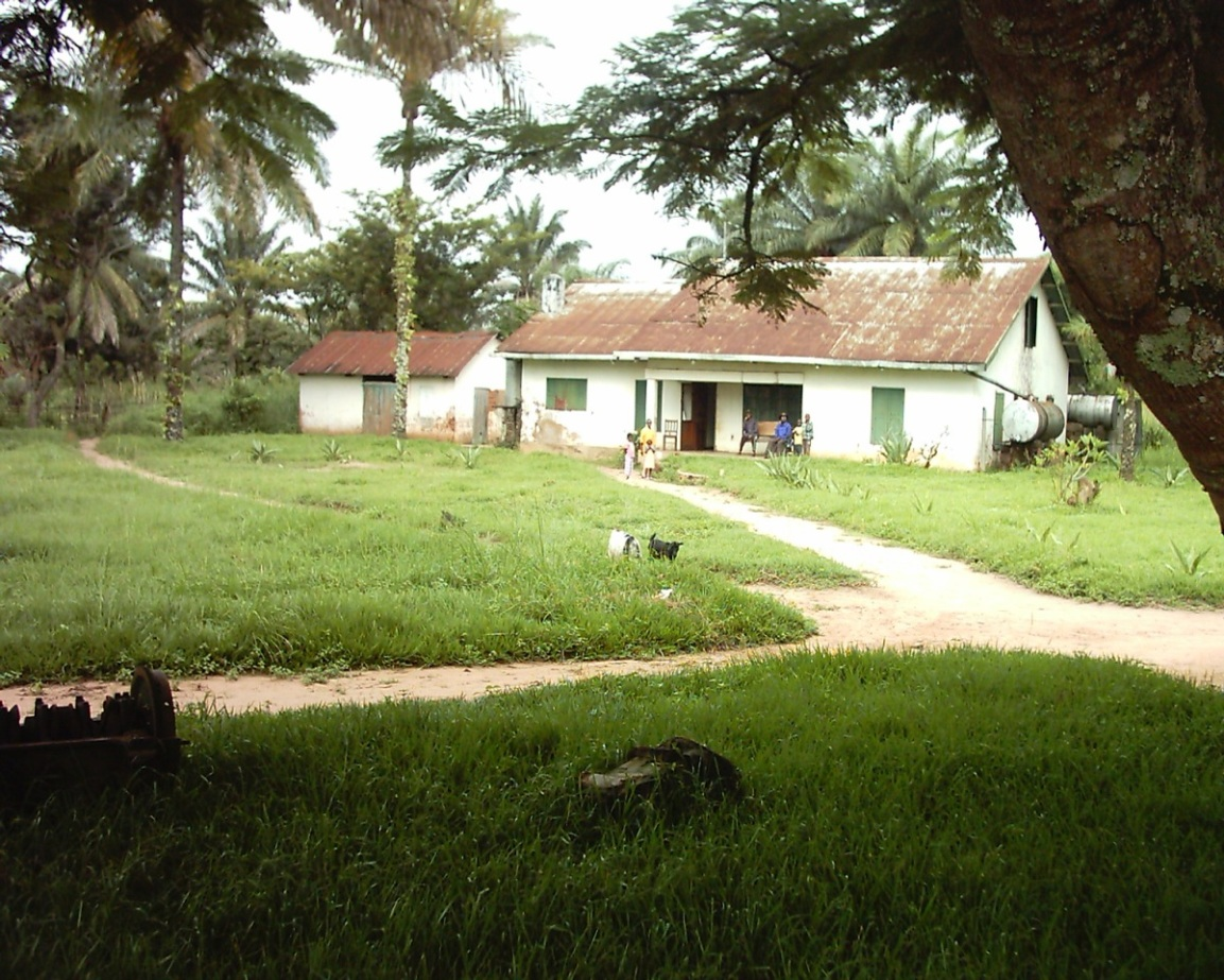 Matt's Nyanga home, a shell of its former appearance